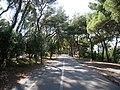 Marjan path.jpg