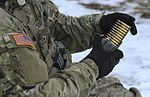 Marksmanship density unites NATO allies 170124-A-DP178-015.jpg