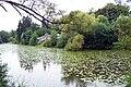 Maticni jezero 2010-09-14.JPG