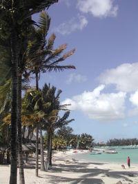 Una playa de Mauricio