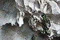 Me Cung Cave (3).jpg