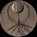 Medaille van Rechtvaardigen onder de Volkeren (embleemzijde).jpg