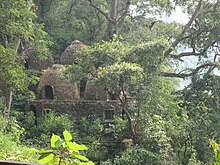 A photograph of meditation chambers, which are small domes built of small stones, with plants growing out of the cracks and surrounded by thick jungle.