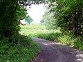 Methersham Lane - geograph.org.uk - 454457.jpg