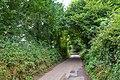 Mid Devon - Pitt Hill (geograph 5900857).jpg