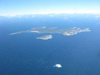 Middle Island (Western Australia)