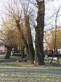 Mohyliv-Podilskyi city park 14.jpg
