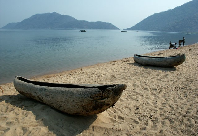 Monoxylon beach Lake Malawi 1557