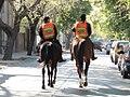 Montada Policia de Mendoza.jpg