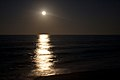 Moonlight on the ocean (6822762251).jpg