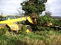 Moving the fallen tree - geograph.org.uk - 610081.jpg