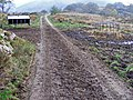 Mud on road - geograph.org.uk - 1377939.jpg