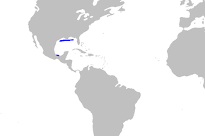Description de l'image Mustelus sinusmexicanus distmap.png.