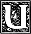 Muusmann-Matadora-U.png