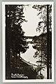 Näkölinja Harjutie–Äijönlahti–Takaharjun ja Silvonniemen välinen kannas–Vaahersalo, Kirkkoniemi, V. A. Sihvonen 1910s–1920s PK0301.jpg