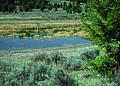 NRCSMT01016 - Montana (4883)(NRCS Photo Gallery).jpg