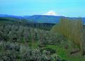 NRCSOR02020 - Oregon (5889)(NRCS Photo Gallery).tif