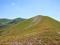 Najvisi vrh Koritnika 2396 m.JPG