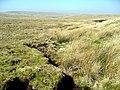 Nant y mynydd - geograph.org.uk - 380053.jpg