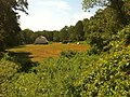 "Narragansett Trail - ""Shelter Cave Field"" meadow with barn adjacent to ""Trolley Pasture"" meadow.jpg"