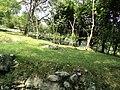 Nasse - panoramio.jpg