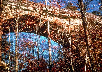 English: A natural bridge in the Big South For...