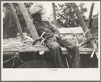 A young African American man in Morganza, 1938 Negro boy sitting on sugarcane truck, Morganza, Louisiana.jpg