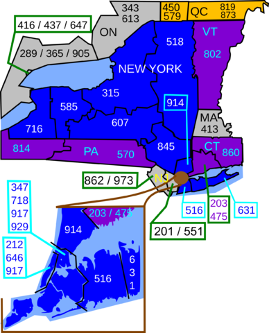 Area Codes of New York By Zimbabweed (Own work) [CC BY-SA 3.0 (https://creativecommons.org/licenses/by-sa/3.0)], via Wikimedia Commons