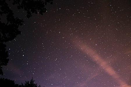 Nuit étoilée en forêt de Rambouillet — 05.jpg