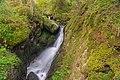 Oberried (Breisgau) - oberer Buselbach-Wasserfall II.jpg