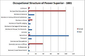 Peover Superior - The occupational structure of Peover Superior in 1881