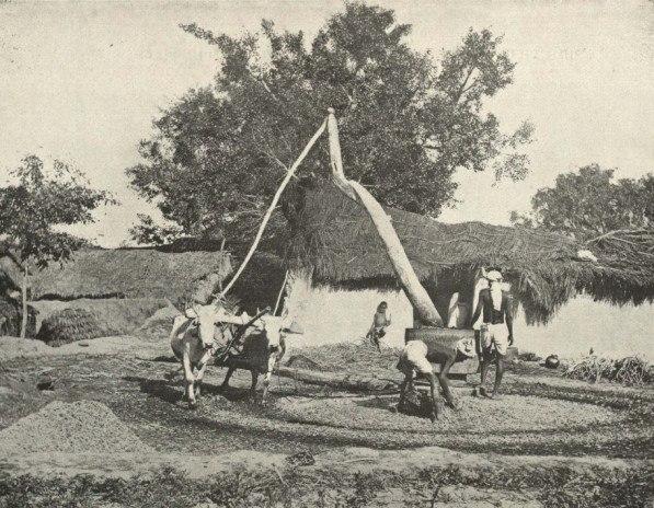 Old-fashioned Indian Sugar=cane Press