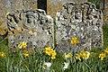 Old St Peter's graveyard, Stockbridge (2378258802).jpg