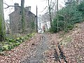 Old lane in Brearley Wood, Mytholmroyd - geograph.org.uk - 1170184.jpg