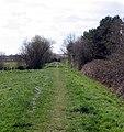 Old railway track-bed near Bridport - geograph.org.uk - 388728.jpg