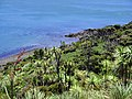 Omapere 0473, New Zealand - panoramio.jpg