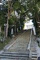 Omiya-hachimangu Miki Hyogo01n4272.jpg