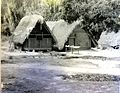On the banks of the Cotica River, Suriname. 1965.jpg
