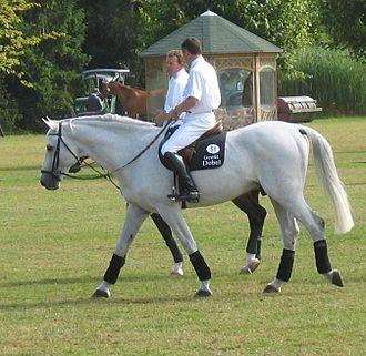 Otto Becker (equestrian) - Image: Otto Becker und Lars Nieberg