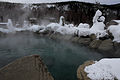 Outdoor pool Chena Hot Springs.jpg