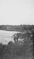 PSM V67 D737 Natural history of hemlock lake.png