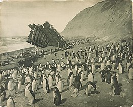 PXD 156 Wreck Macquarie Island Hurley (cropped).jpg