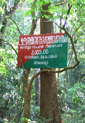 Pakshi Pathalam - Kerala Forest Board on Pakshipathaam route