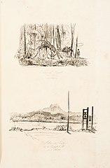 Palme auf dem Wege zur Gavia den 21 tem, Octb. 1842 - Die Gavia von Boa vista aus den 21 October 1842