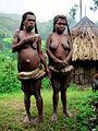 PapuaBarat5.jpg