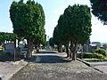 Paršovice, hřbitov.JPG