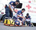 Paramedico al rescate.jpg