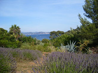 Parc du Mugel - Lavander, cactus and the tropical garden