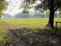 Аграрний парк тічінелло мілан