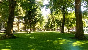 Park Blocks July 2016 - Portland, Oregon.jpg